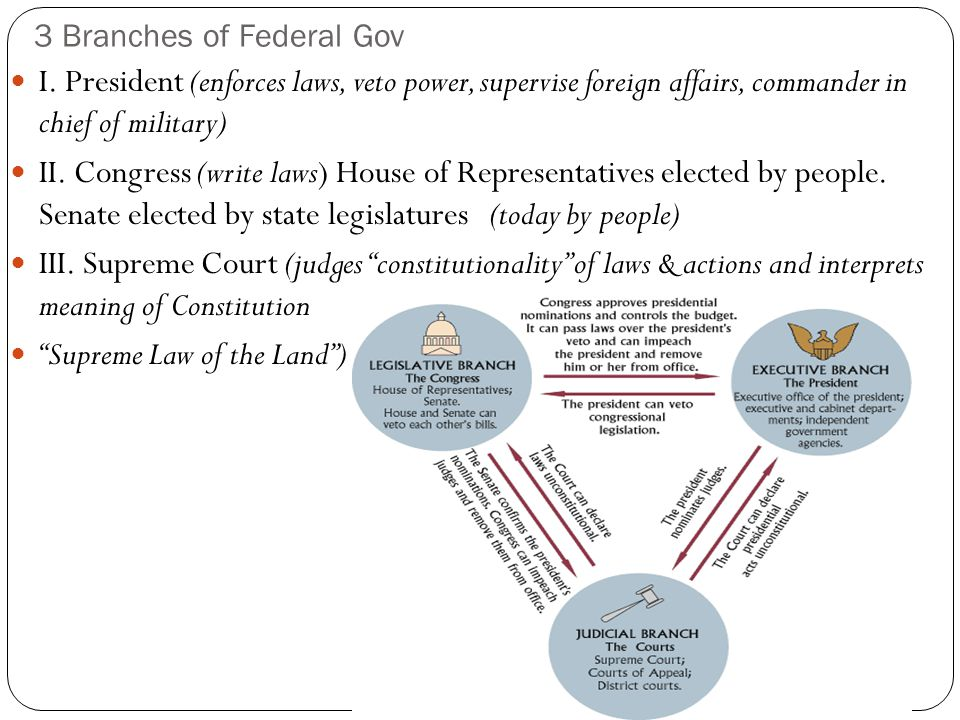 3 Branches of Federal Gov