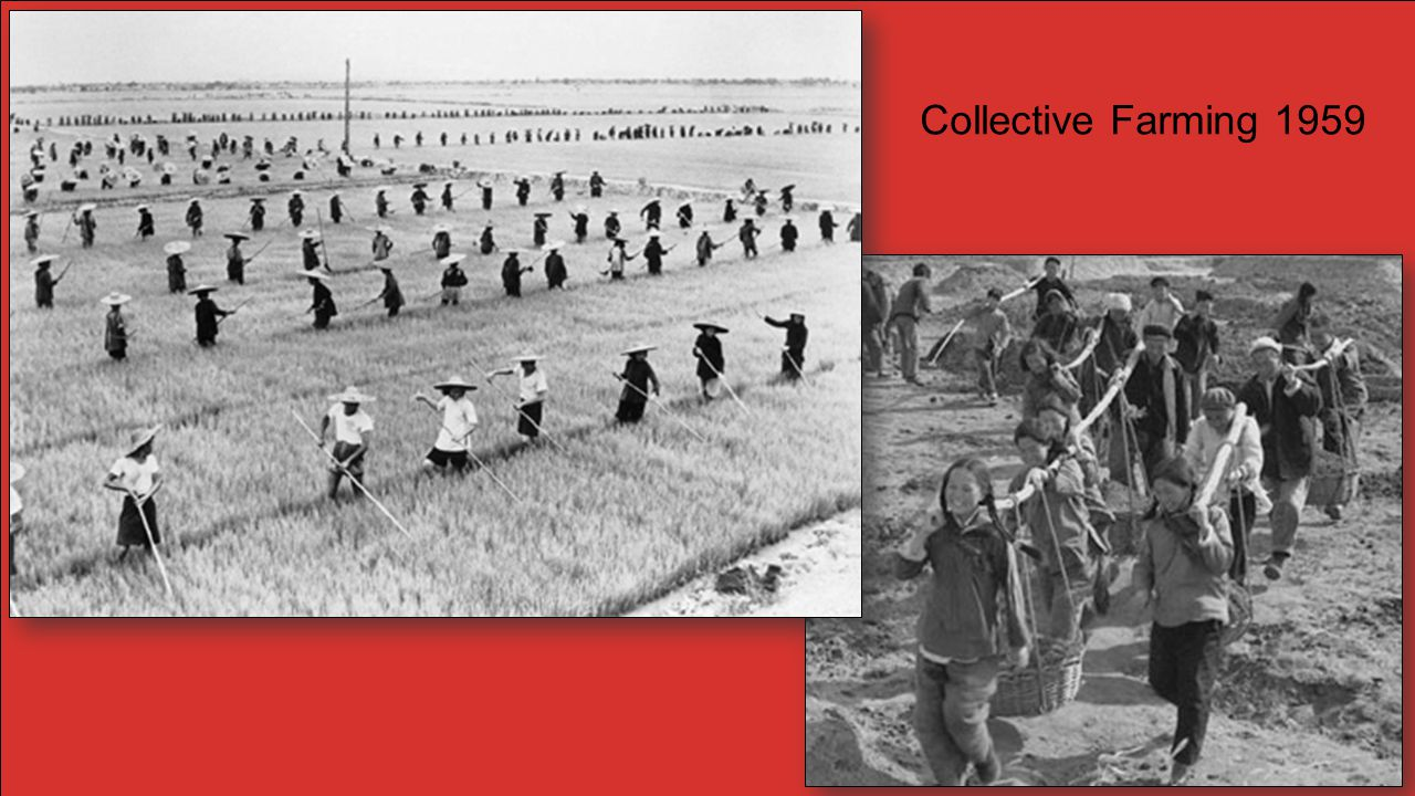 Collective Farming 1959