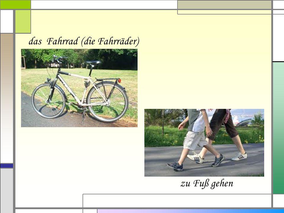das Fahrrad (die Fahrräder)