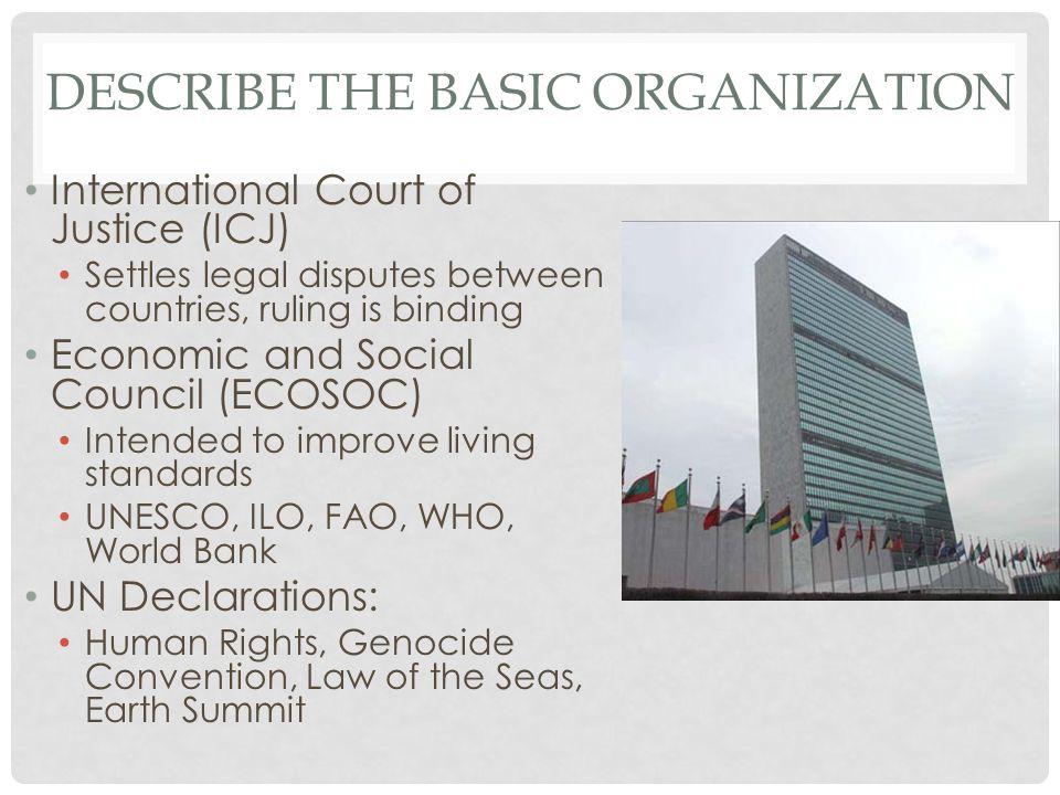 Describe the basic Organization