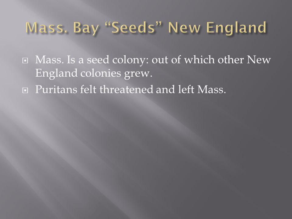 Mass. Bay Seeds New England