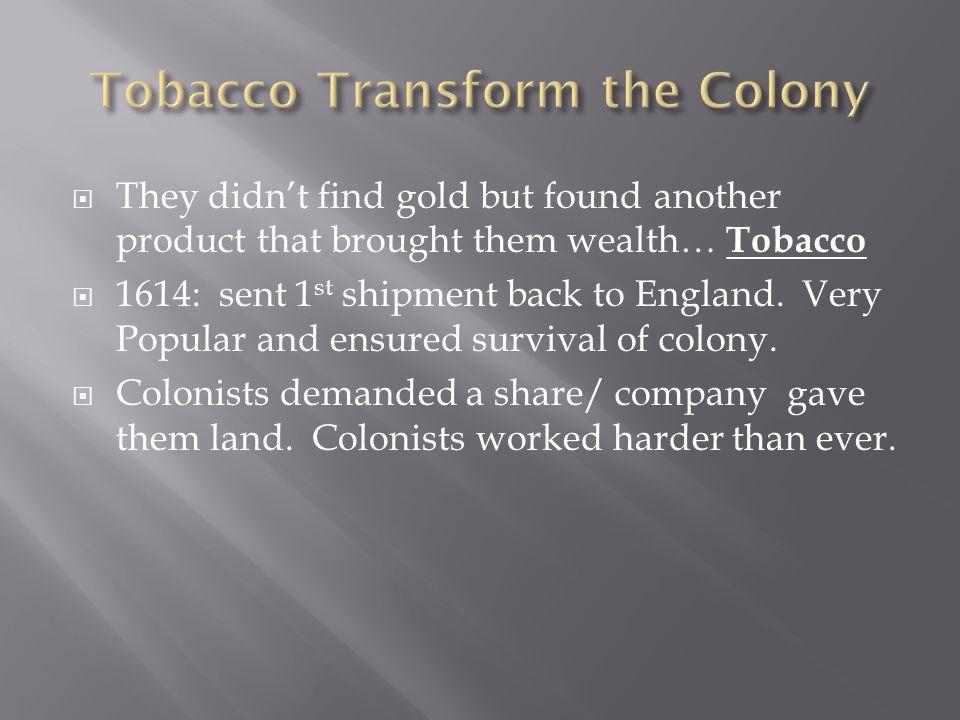 Tobacco Transform the Colony
