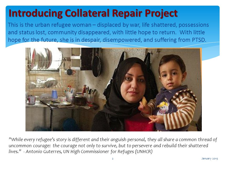 Introducing Collateral Repair Project
