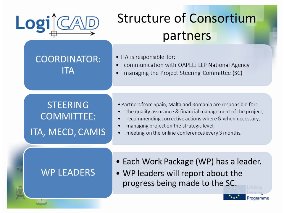 Structure of Consortium partners