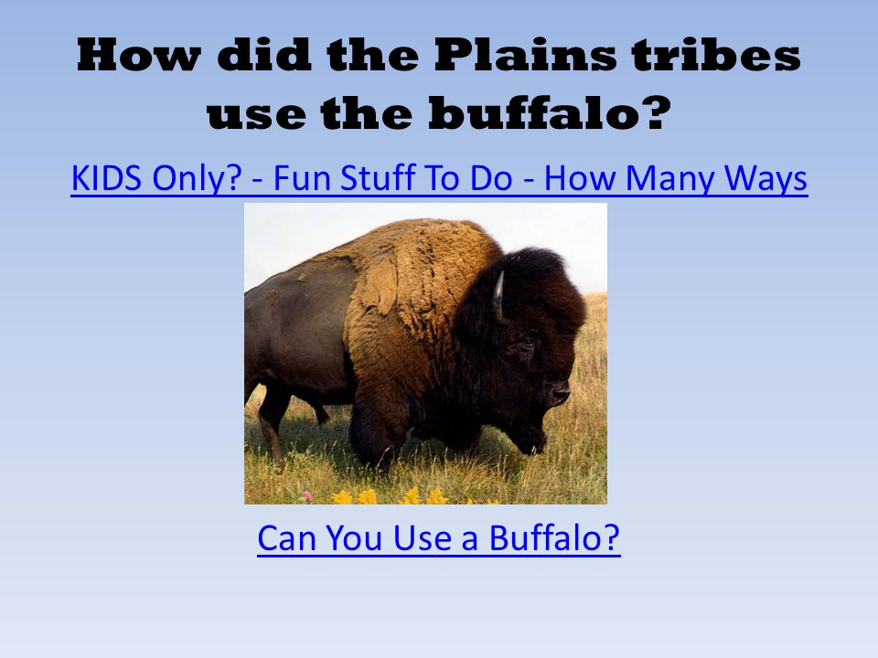 How did the Plains tribes use the buffalo