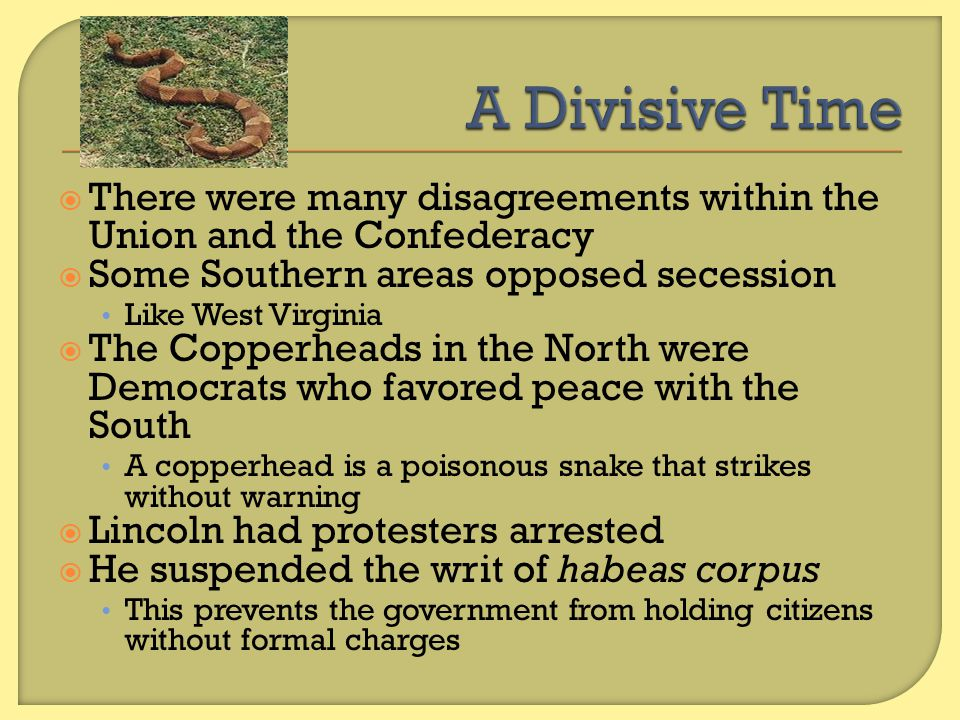 A Divisive Time There were many disagreements within the Union and the Confederacy. Some Southern areas opposed secession.