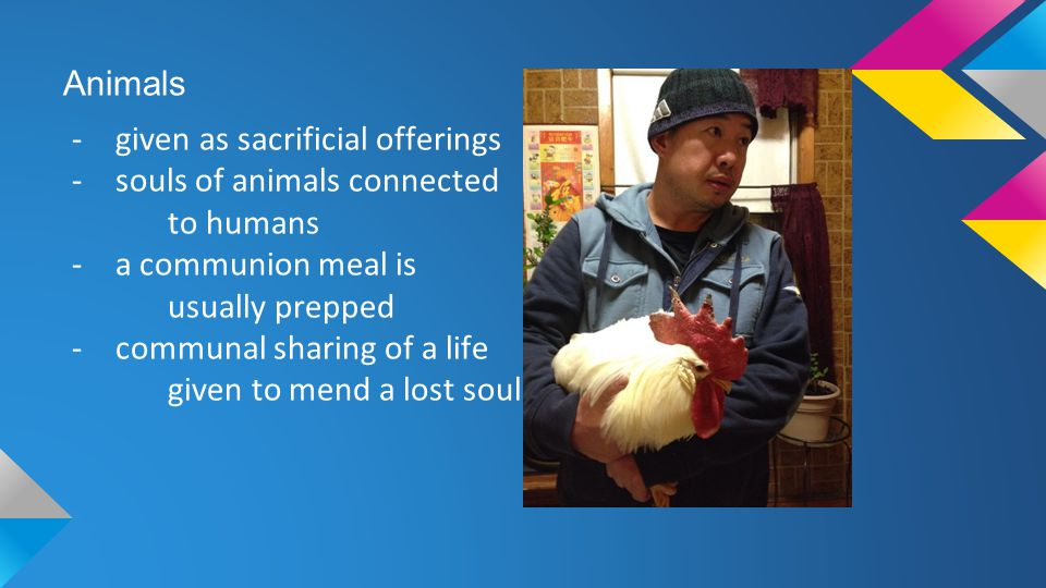 Animals given as sacrificial offerings. souls of animals connected. to humans. a communion meal is.