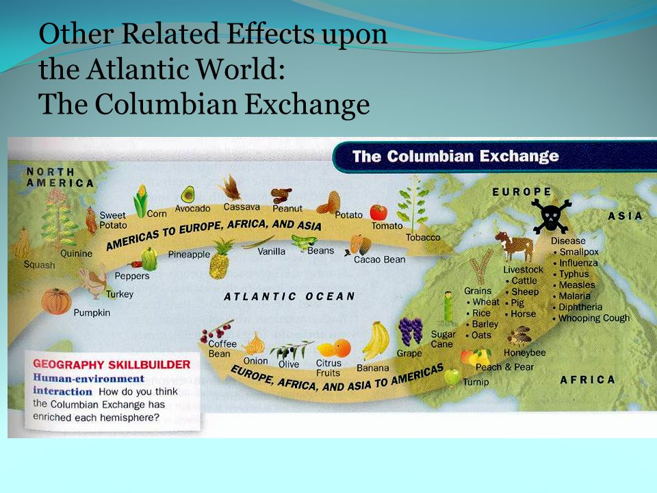 Other Related Effects upon the Atlantic World: The Columbian Exchange