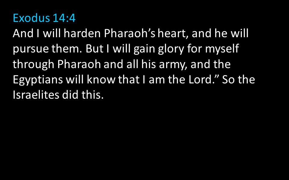 Exodus 14:4
