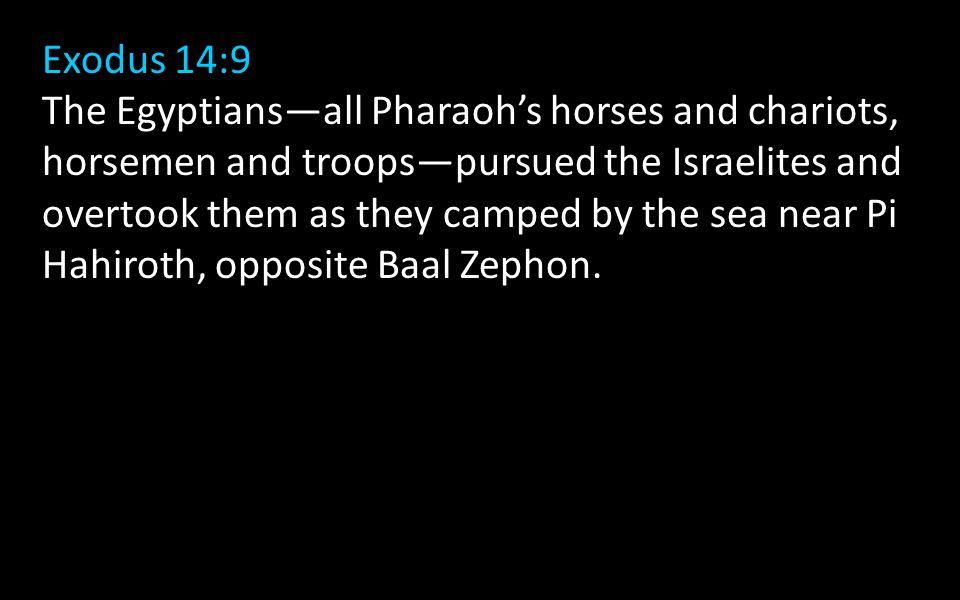 Exodus 14:9