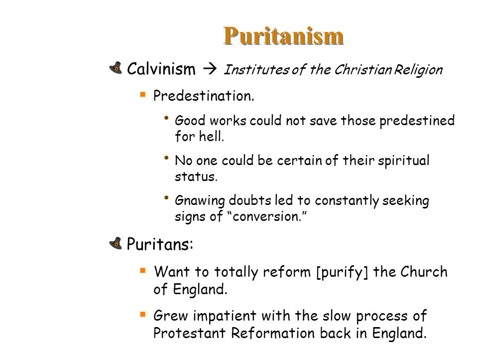 Puritanism Calvinism  Institutes of the Christian Religion Puritans: