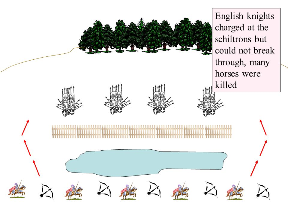 English knights charged at the schiltrons but could not break through, many horses were killed