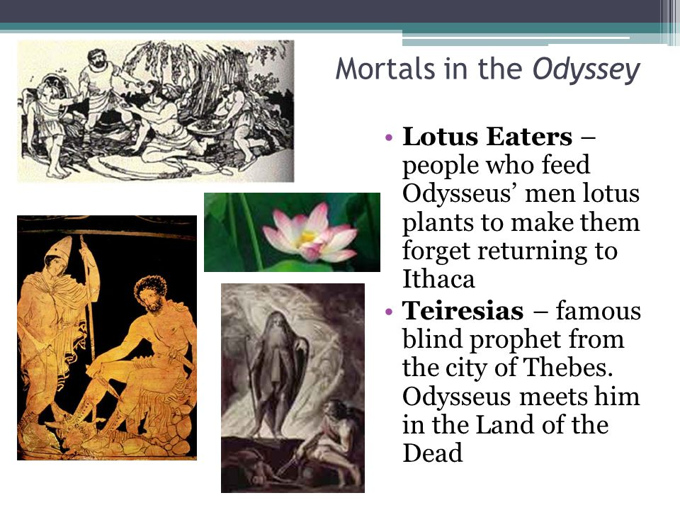 Mortals in the Odyssey Lotus Eaters – people who feed Odysseus' men lotus plants to make them forget returning to Ithaca.