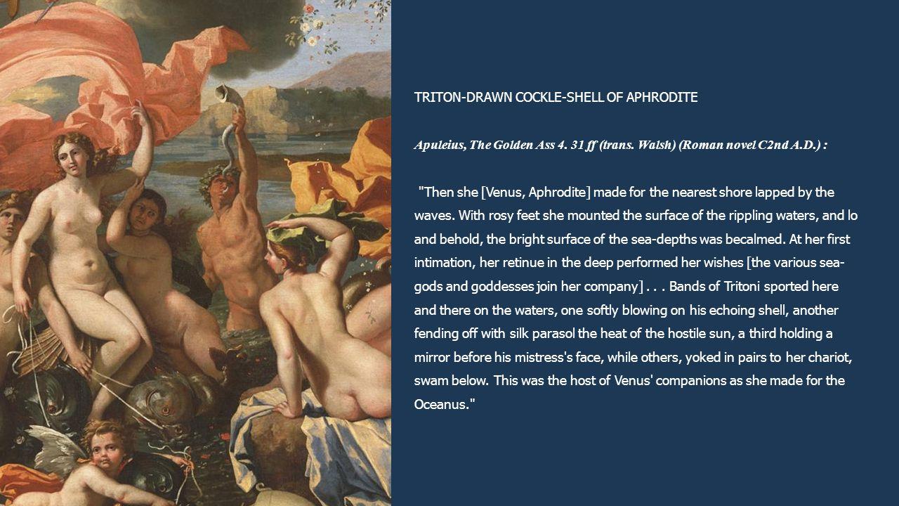TRITON-DRAWN COCKLE-SHELL OF APHRODITE