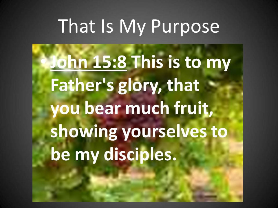 That Is My Purpose John 15:8 This is to my Father s glory, that you bear much fruit, showing yourselves to be my disciples.