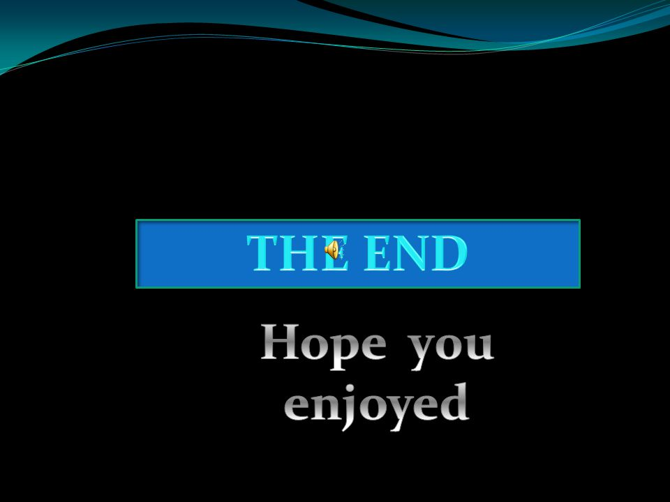 THE END Hope y0u enjoyed