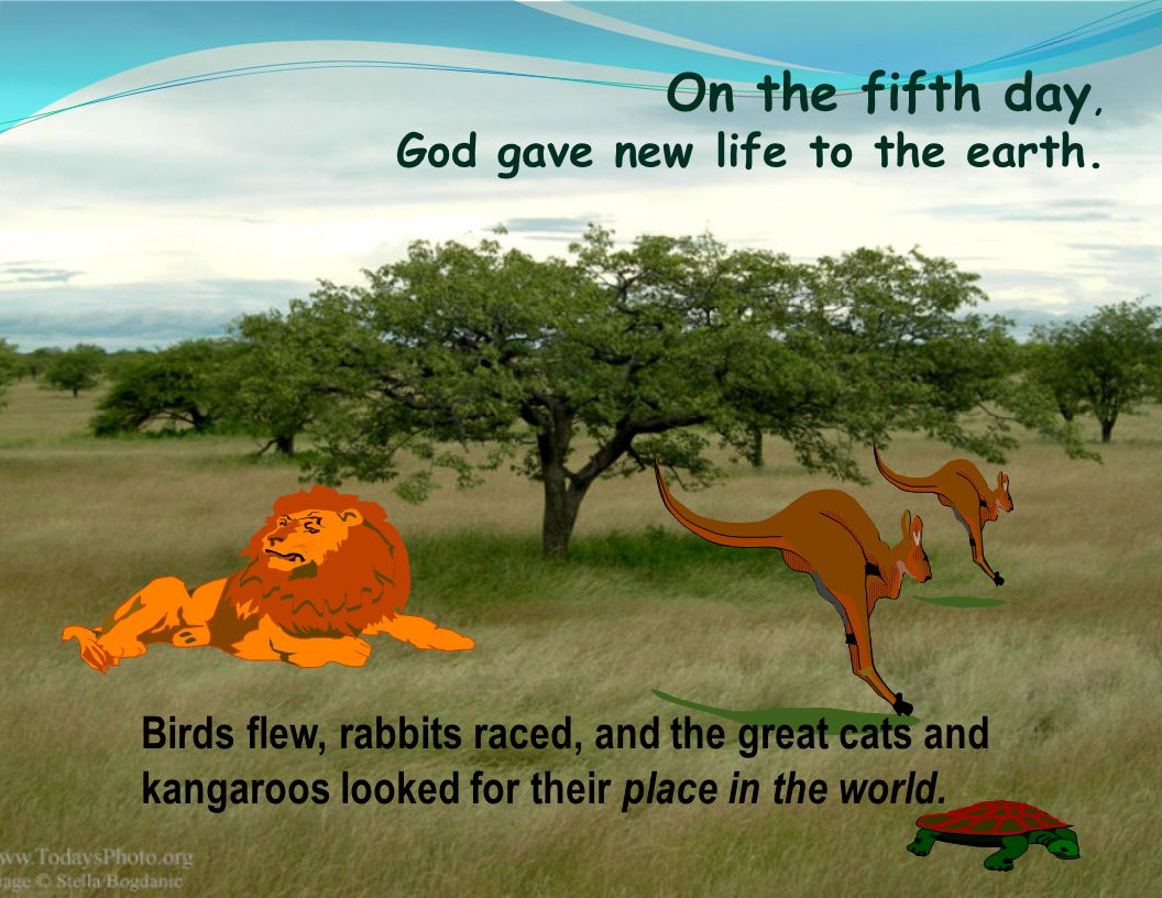 On the fifth day, God gave new life to the earth.