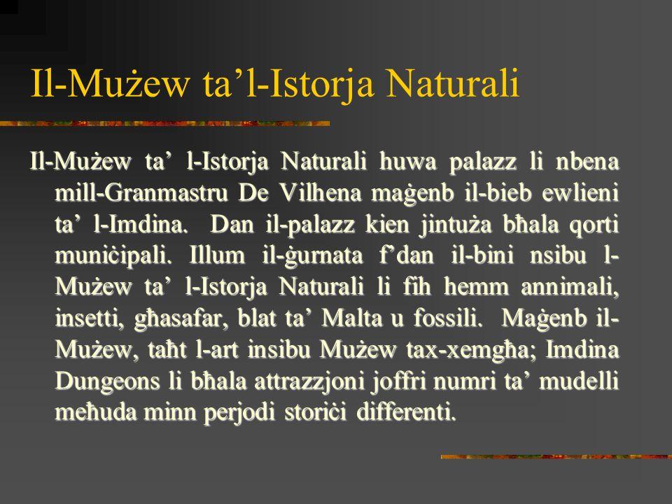 Il-Mużew ta'l-Istorja Naturali