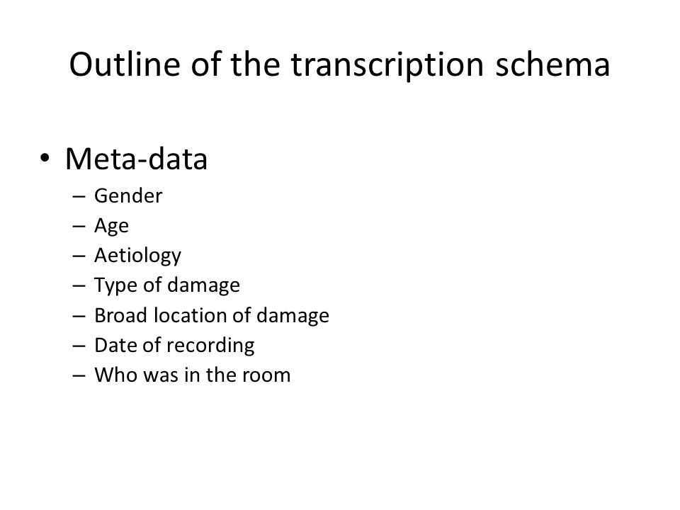 Outline of the transcription schema