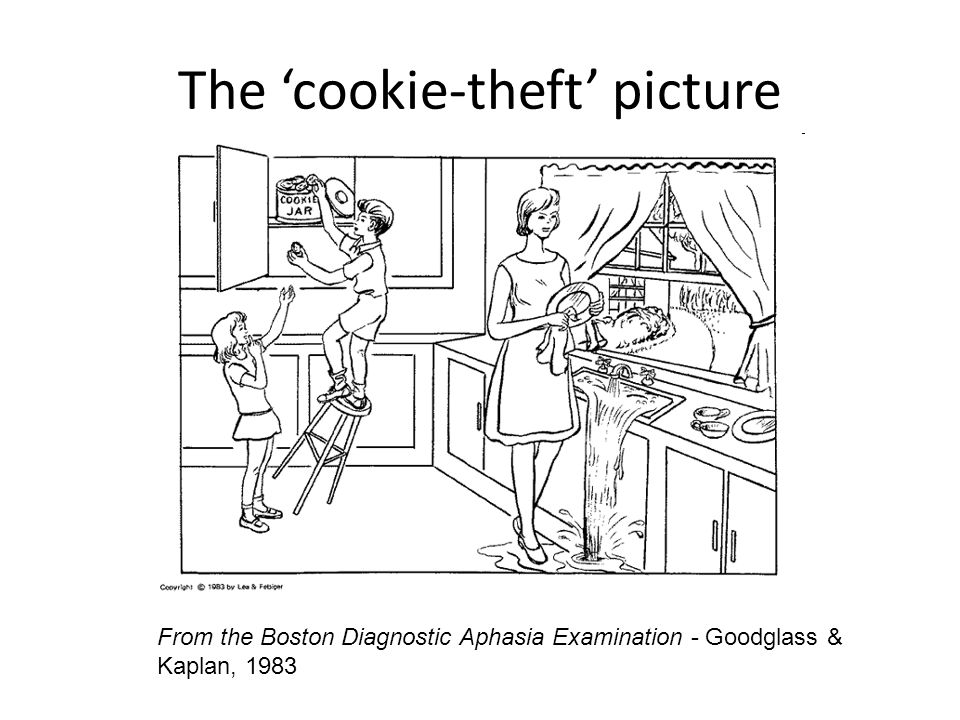The 'cookie-theft' picture