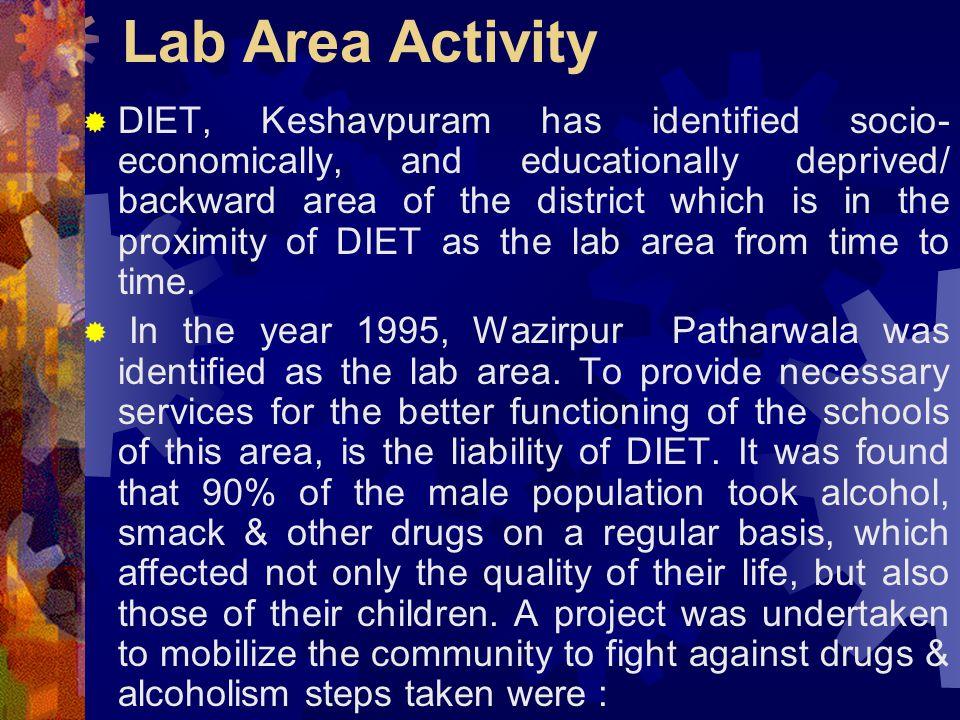 Lab Area Activity