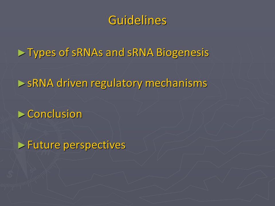 Guidelines Types of sRNAs and sRNA Biogenesis