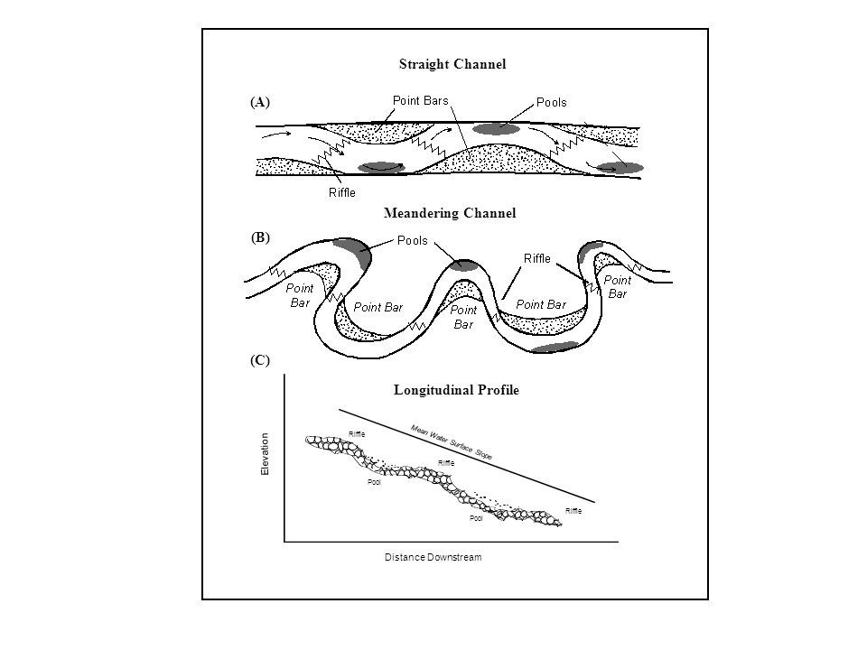 Straight Channel (A) Meandering Channel (B) (C) Longitudinal Profile