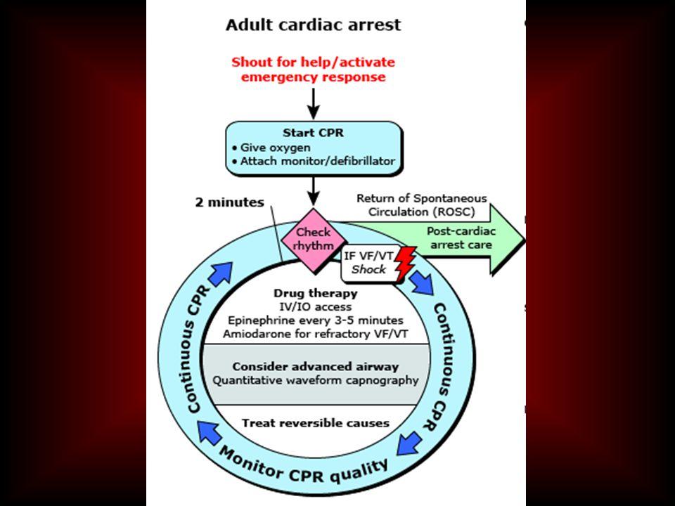 Universal cardiac arrest algorithm