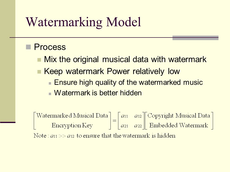 Watermarking Model Process