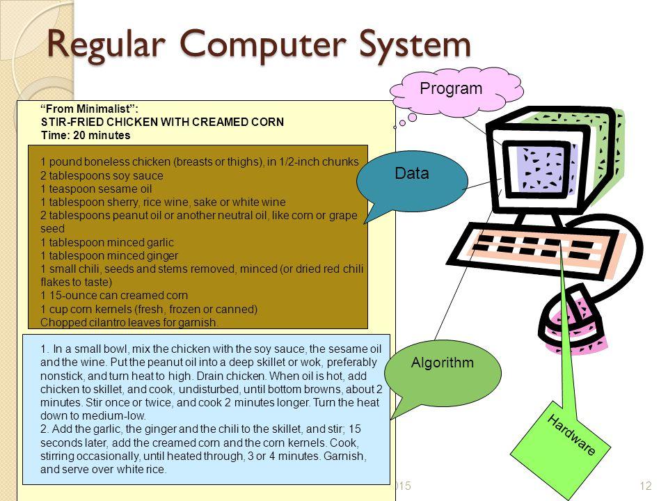 Regular Computer System