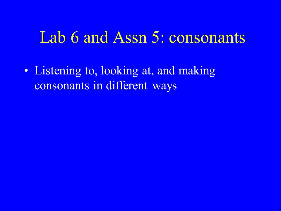 Lab 6 and Assn 5: consonants