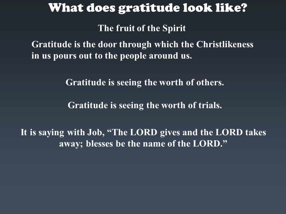 What does gratitude look like