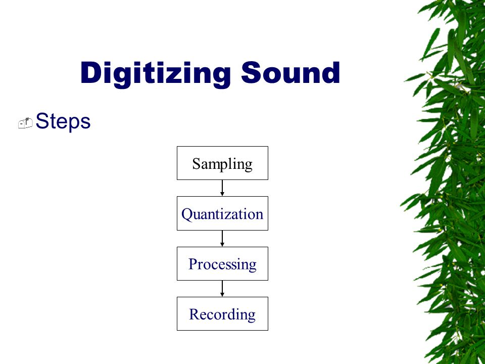 Digitizing Sound Steps Sampling Quantization Processing Recording