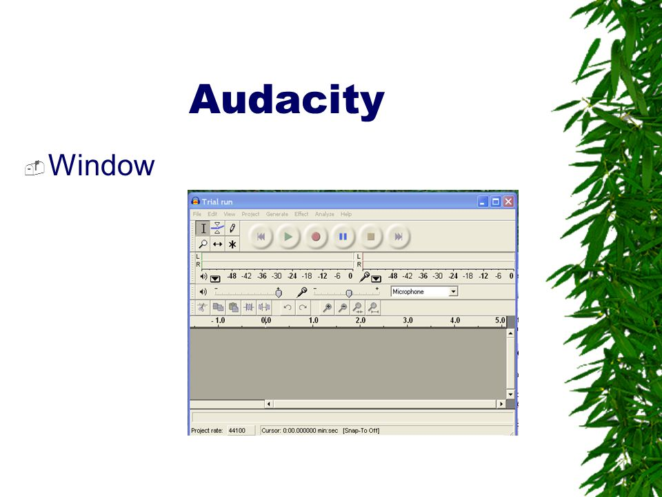 Audacity Window