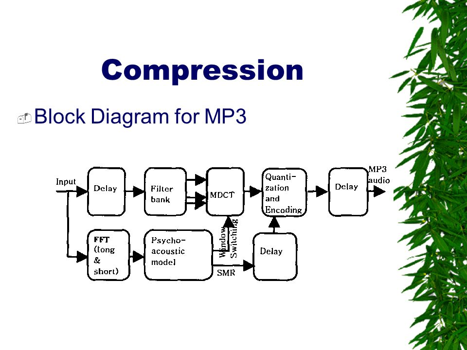 Compression Block Diagram for MP3