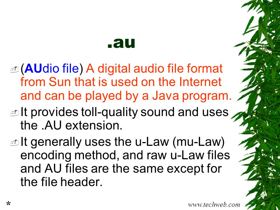 .au (AUdio file) A digital audio file format from Sun that is used on the Internet and can be played by a Java program.