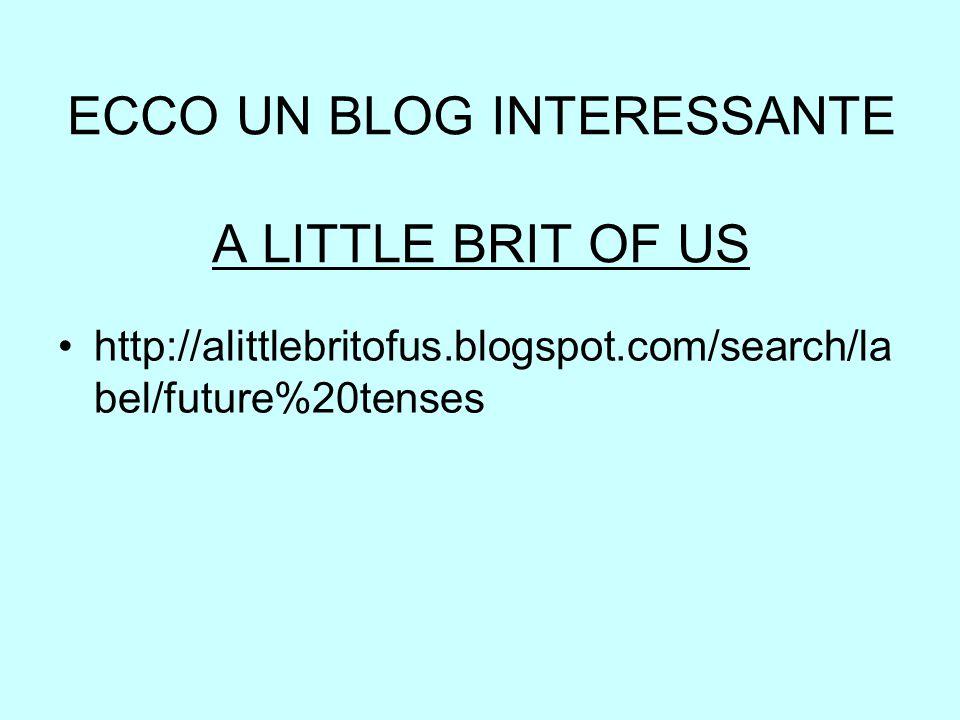 ECCO UN BLOG INTERESSANTE A LITTLE BRIT OF US