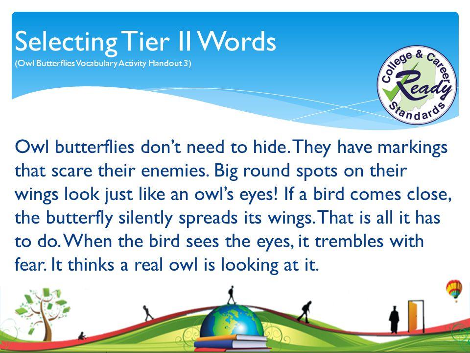 Selecting Tier II Words (Owl Butterflies Vocabulary Activity Handout 3)