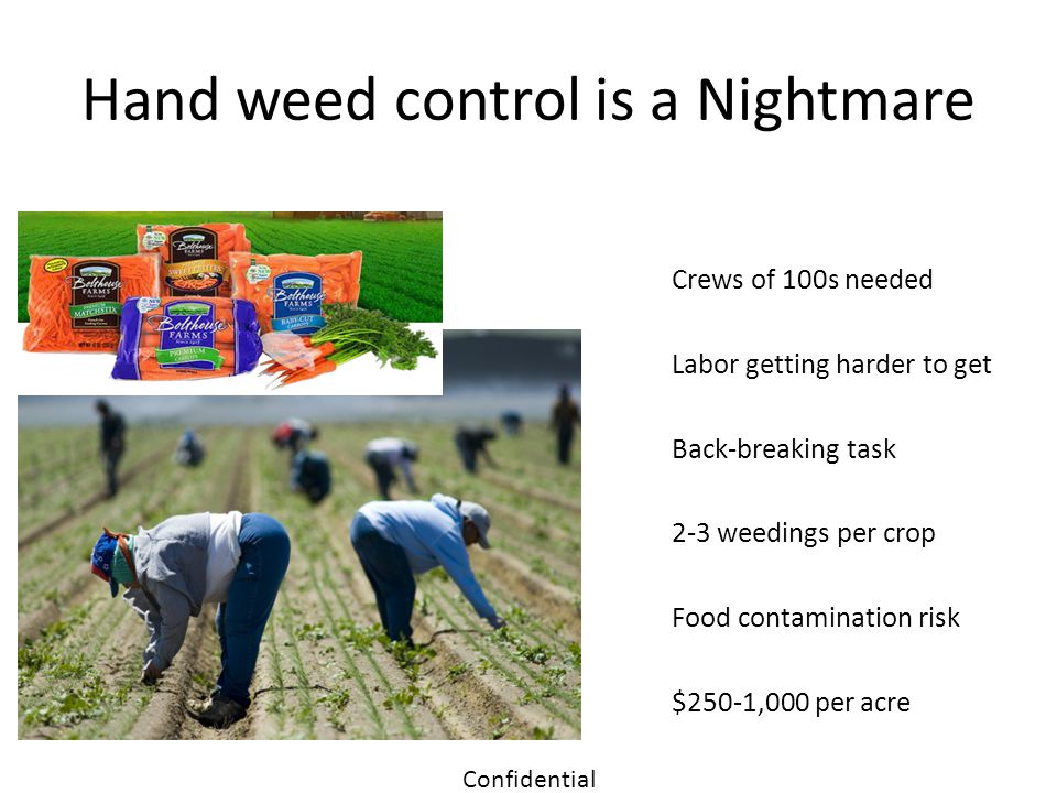 Hand weed control is a Nightmare
