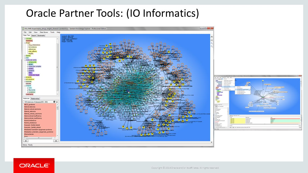 Oracle Partner Tools: (IO Informatics)