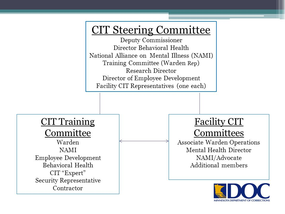 CIT Steering Committee