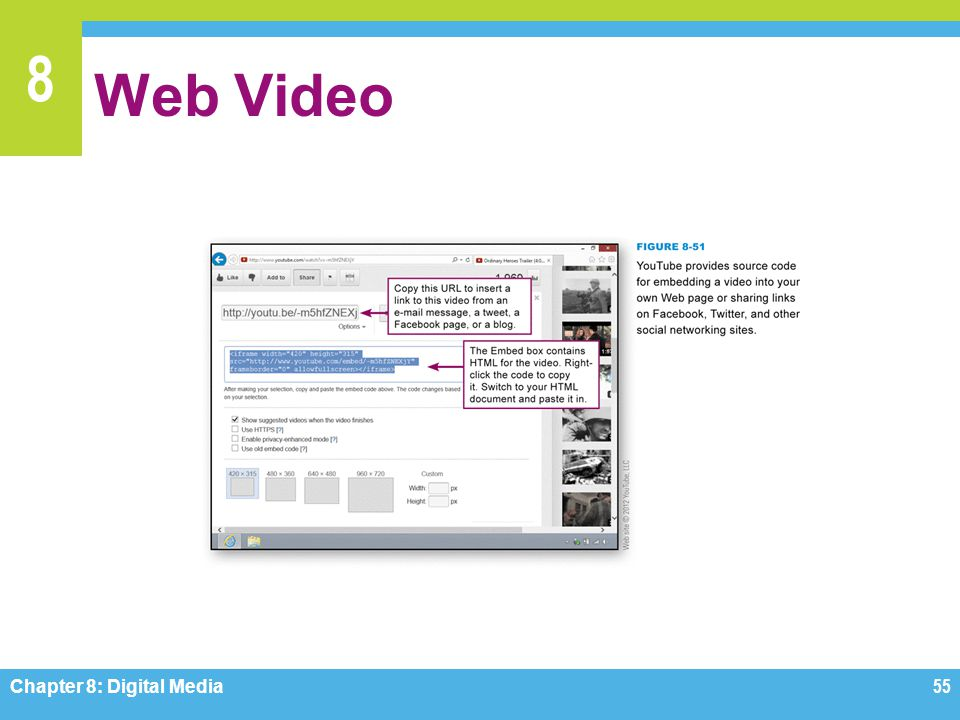 Web Video Figure 8-51 Chapter 8: Digital Media