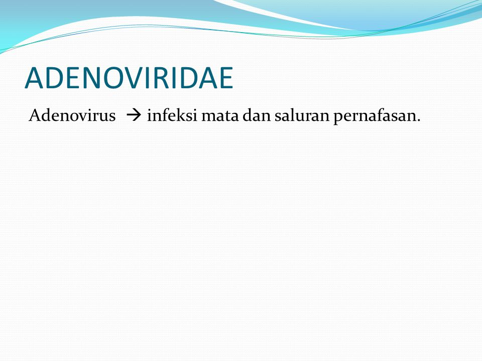 ADENOVIRIDAE Adenovirus  infeksi mata dan saluran pernafasan.