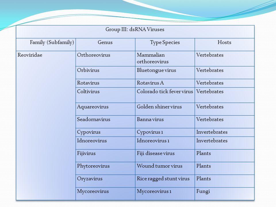 Group III: dsRNA Viruses
