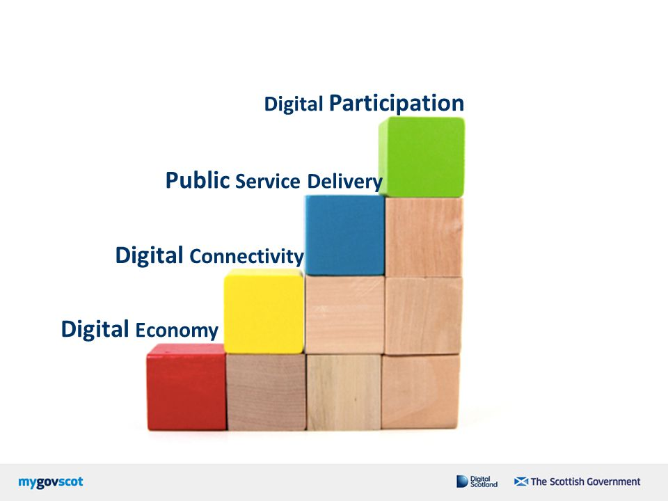 Digital Participation Public Service Delivery