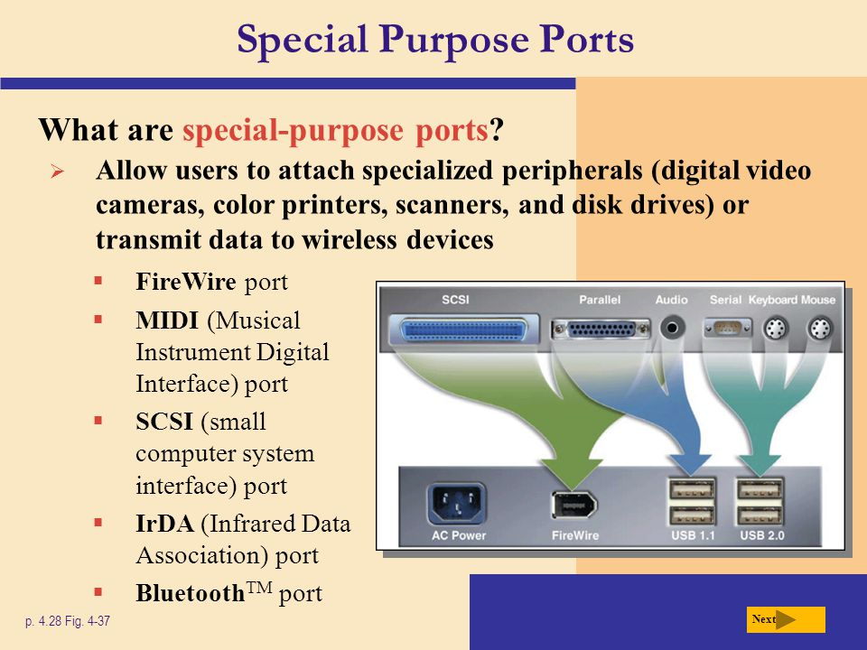 Special Purpose Ports What are special-purpose ports