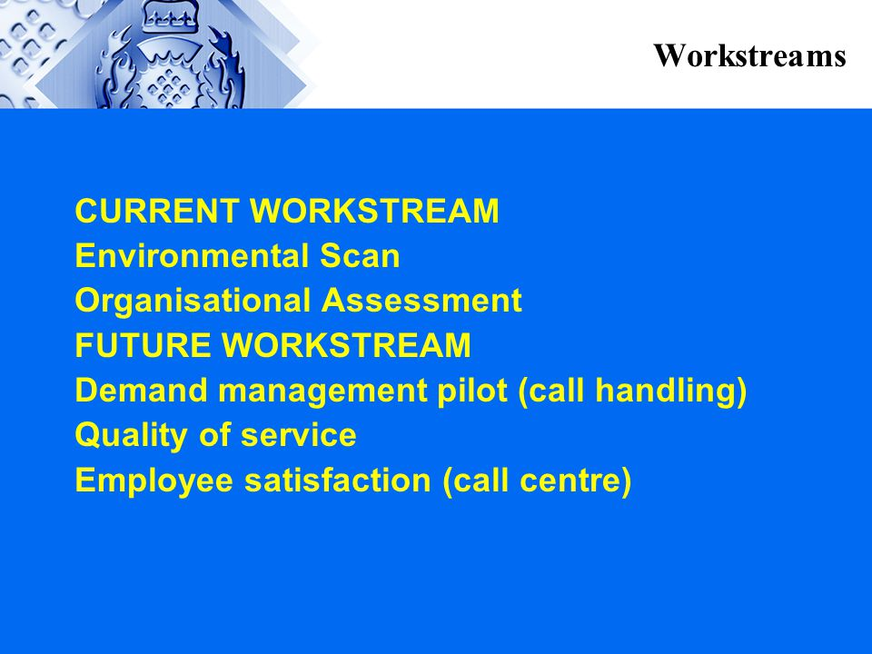 Workstreams CURRENT WORKSTREAM. Environmental Scan. Organisational Assessment. FUTURE WORKSTREAM.