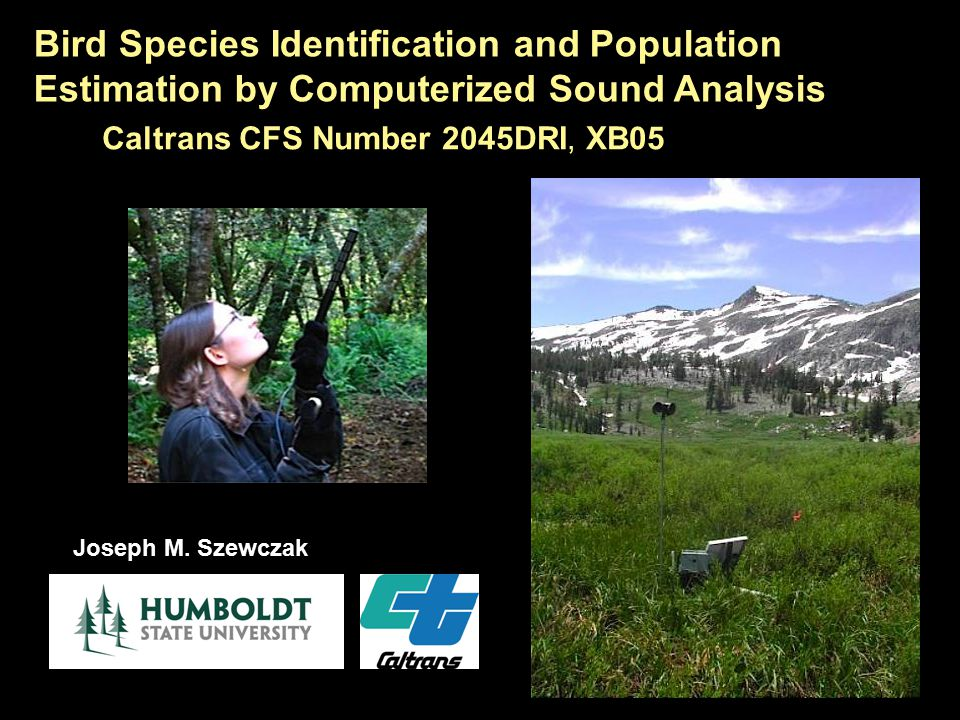 Bird Species Identification and Population Estimation by Computerized Sound Analysis