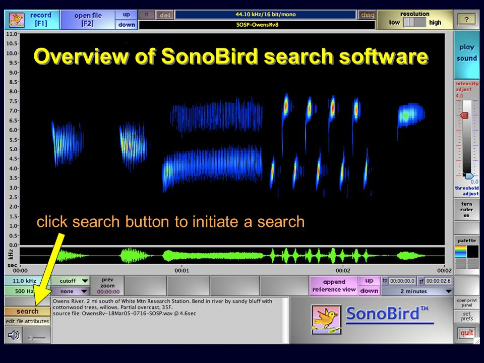Overview of SonoBird search software