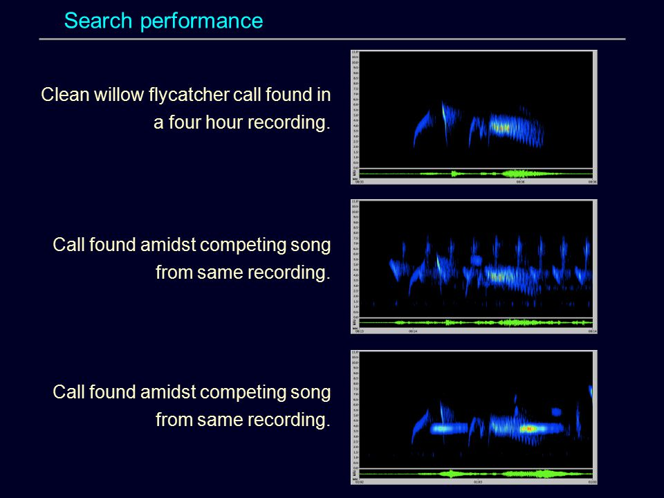 Search performance Clean willow flycatcher call found in a four hour recording. Call found amidst competing song from same recording.